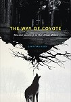 a van horn the way of coyote